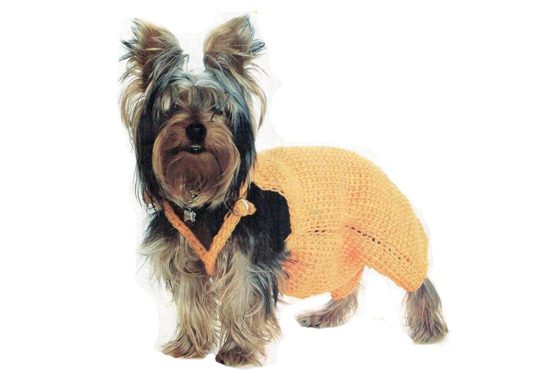 790451175577133fdd9d605.30529690 Одежда для собак своими руками