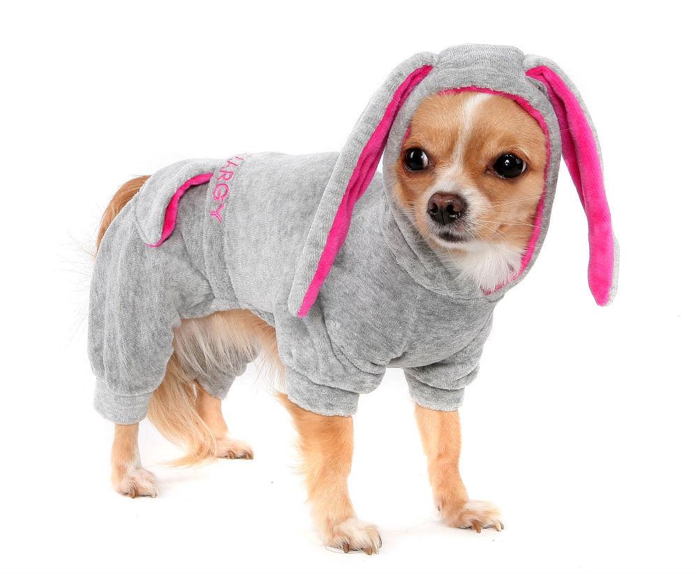 Выкройка комбинезона для маленьких собак