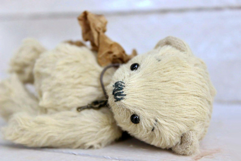 Крошечные мишки Тедди