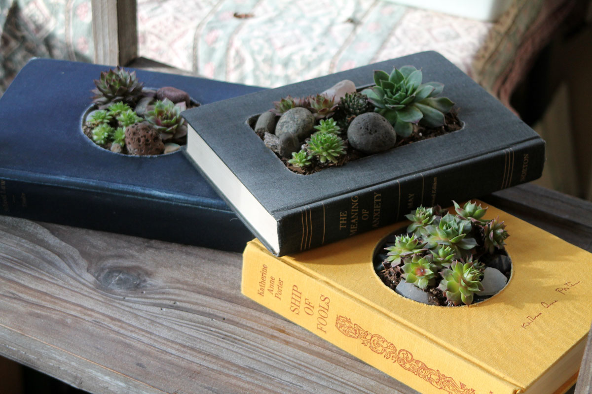 Идея декора — книга с растениями