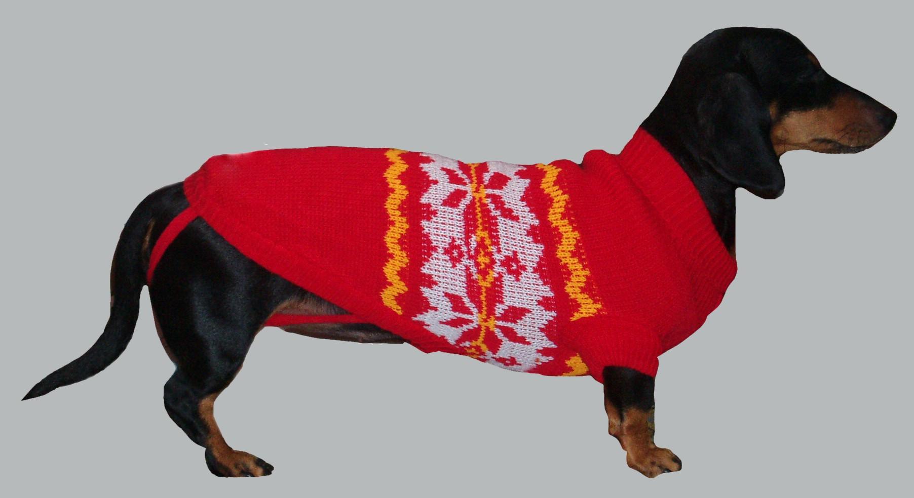 Как связать свитер для собаки спицами своими руками