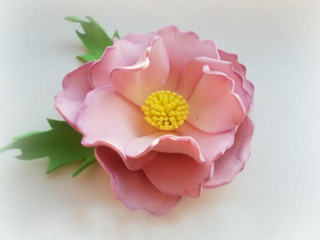 Поделки из фоамирана своими руками: цветок розового шиповника