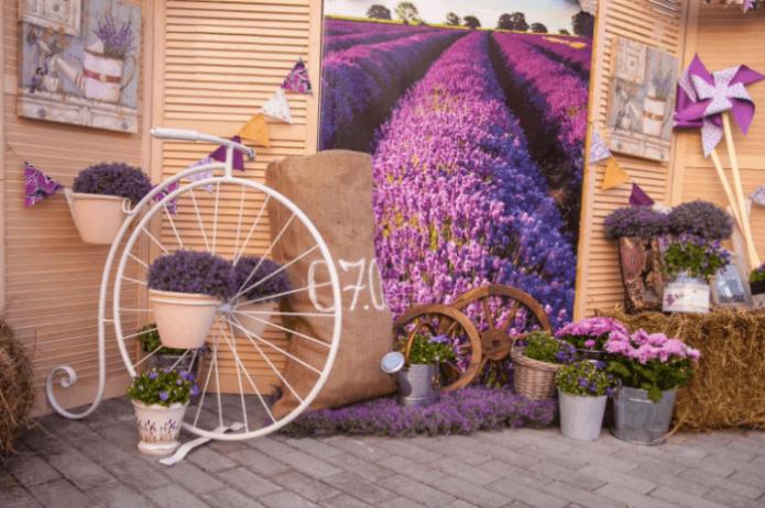 Площадка для фотосессии в стиле Прованс