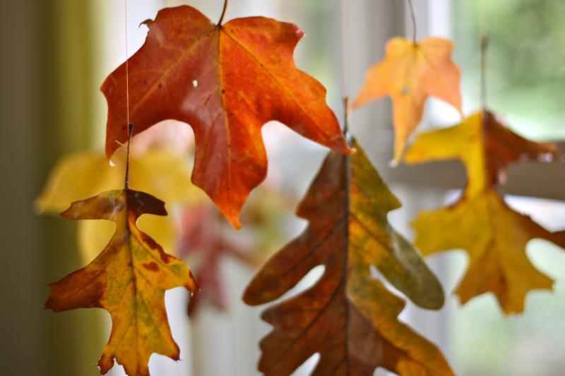 25 оригинальных идей декора из осенних листьев для вашего интерьера