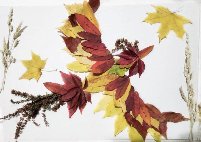 Аппликация птица из осенних листьев