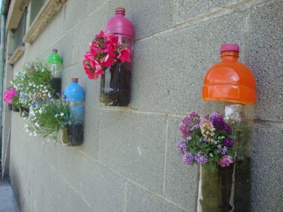 Цветы в кашпо