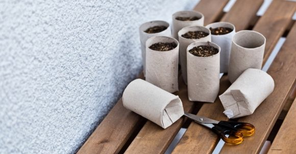 Маленькие горшки для растений из втулок