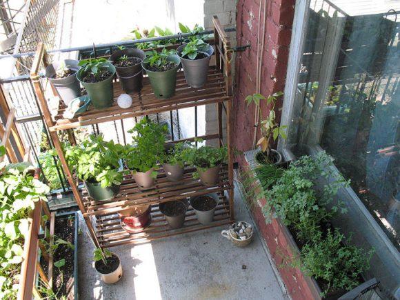 Стеллажи для рассады на балконе