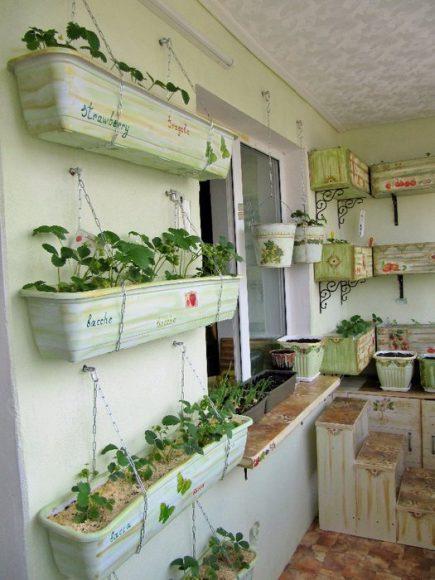 Подвесные ящики для рассады на балконе