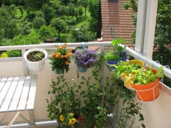 Подвесные горшки с цветами на балконе