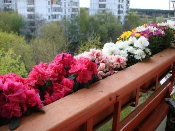 Лотки с цветами на внешней стороне балкона