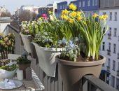 Подвесные цветочные горшки для балкона