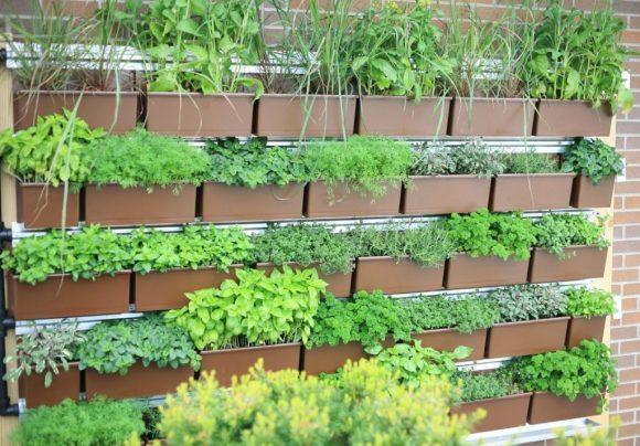 Подвесные грядки с растениями