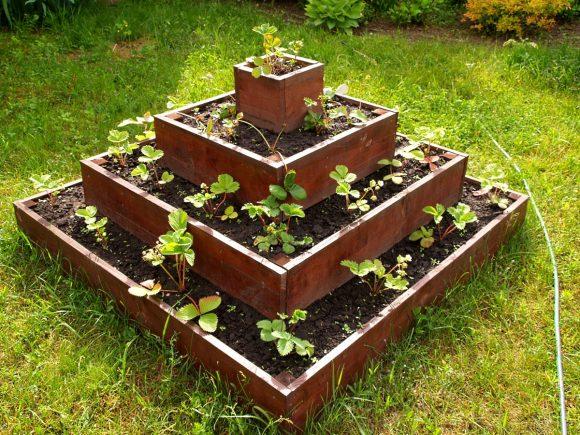 Многоуровневая квадратная грядка с ростками