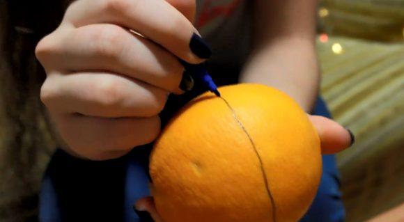 Линия разреза на апельсине