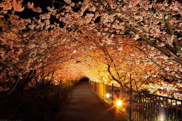 Тоннель Любви в Японии