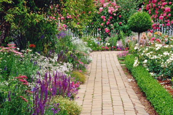 Оформление садовой дорожки бордюром из смеси цветов