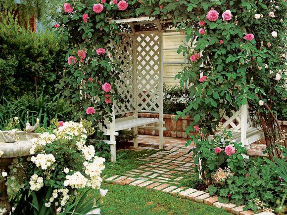 Пергола, украшенная вьющимися розами