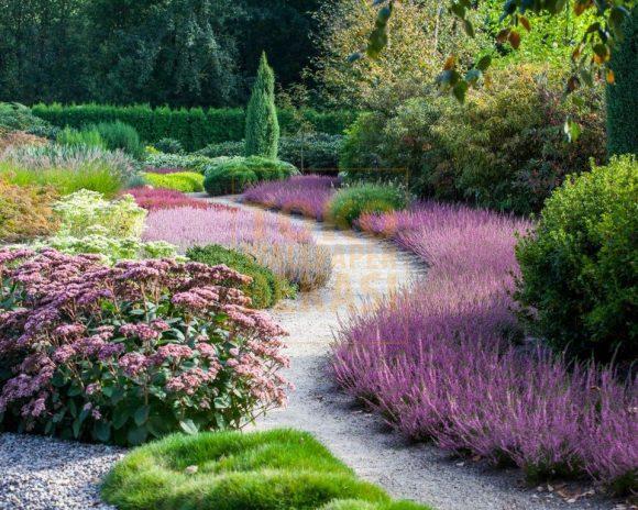 Эффектный цветочный бордюр садовой дорожки