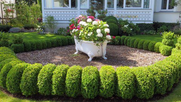 Эффектное оформление садовой клумбы