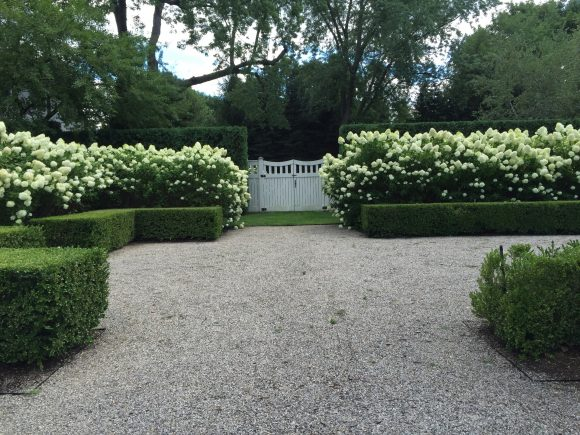 Красивая цветочная ограда