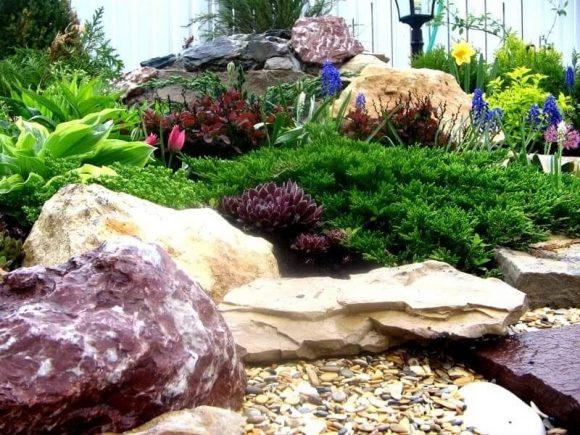 Эффектная альпийская горка из разноцветных камней