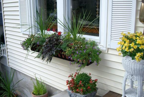 Цветочные композиции на крыльце и подоконнике загородного дома