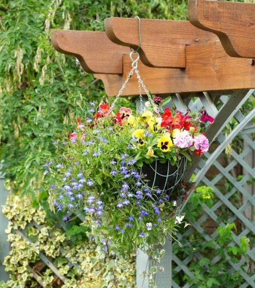 Подвесной садик на перголе
