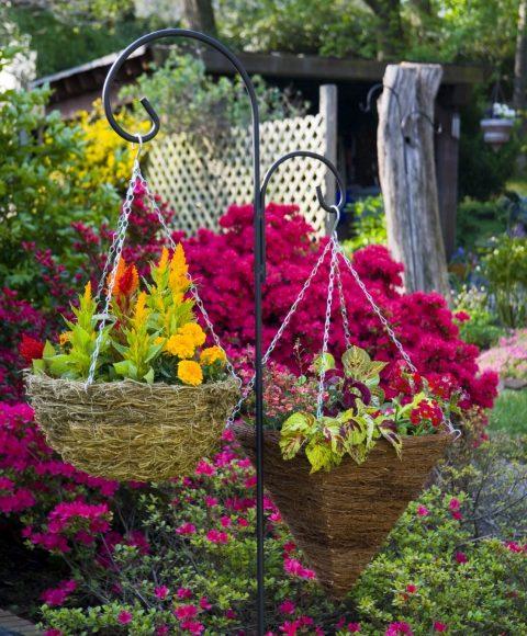 Композиция из подвесных растений на даче