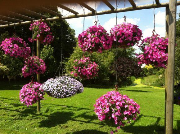 Оригинальный подвесной садик на даче