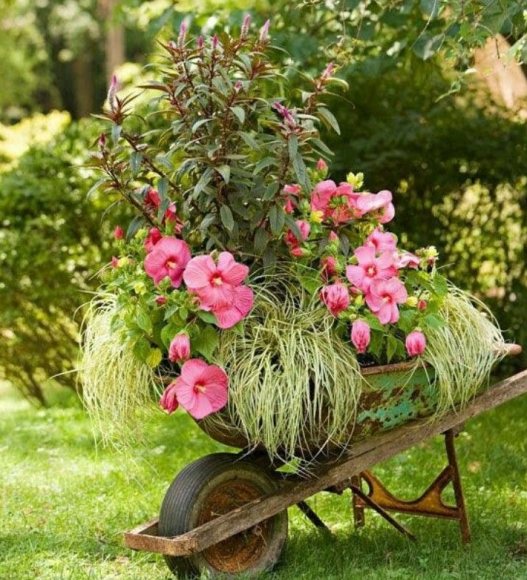 Эффектная клумба на старой садовой тачке