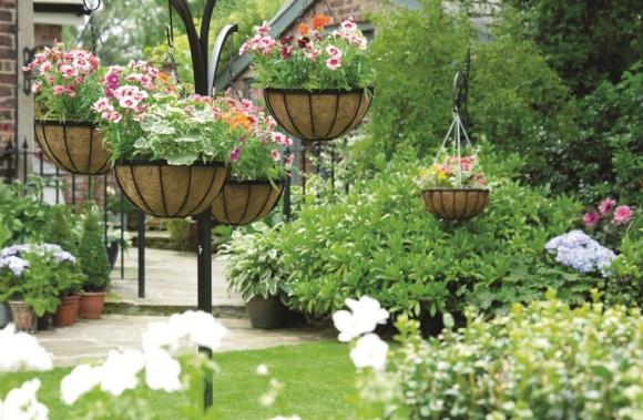 Эффектный дизайн садового участка