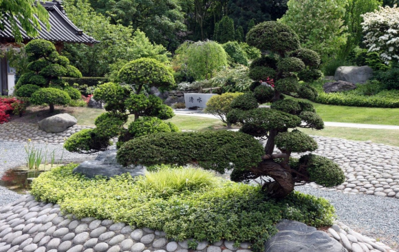 Японский садик на дачном участке