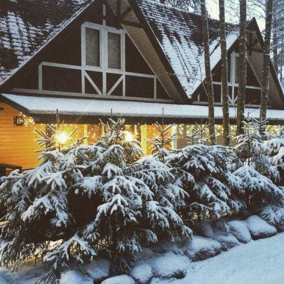 Дача с хвойниками зимой