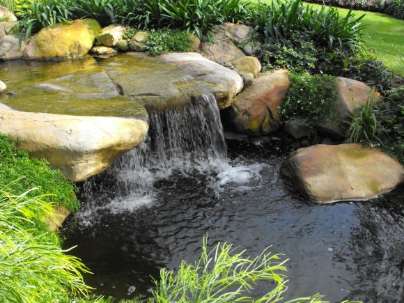 Маленький пруд с водопадом