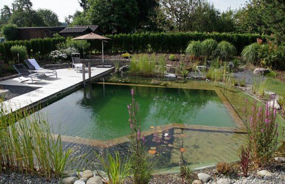 Пруд-бассейн на даче