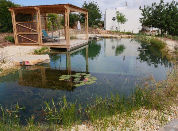 Большой дачный пруд для купания