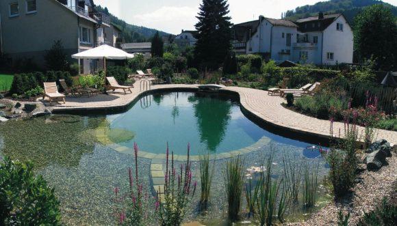 Эффектный пруд-бассейн на участке загородного дома