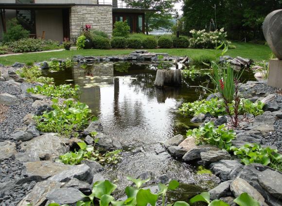 Колоритный пруд на лужайке загородного дома