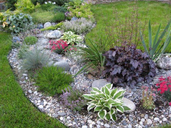 Рокарий в виде сухого ручья с хостой и цветами