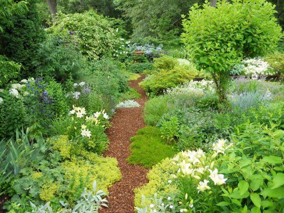 Дорожка в саду природного стиля
