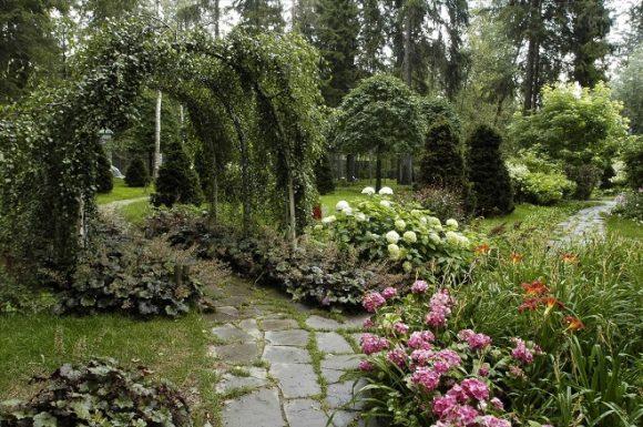 Гортензия на садовом участке в экостиле