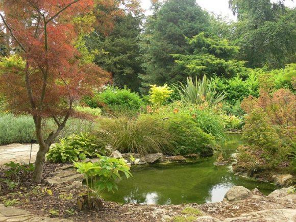 Маленький пруд на участке природного дизайна