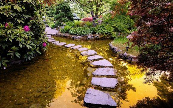 Эффектный водоём в саду природного дизайна