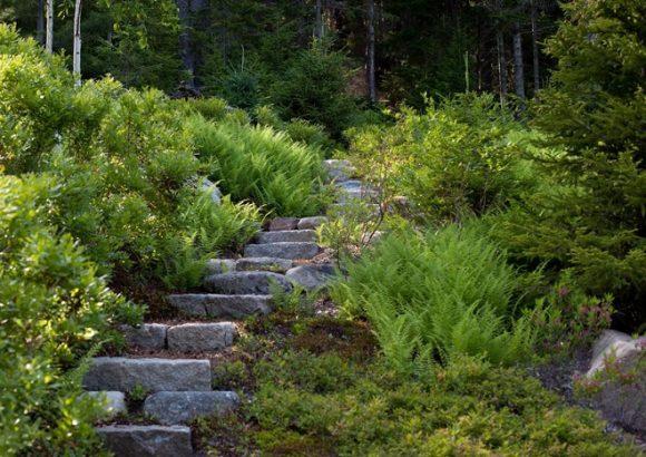 Колоритная лестница в саду экостиля