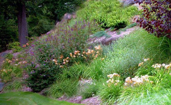 Живописный горный склон в саду природного ландшафта