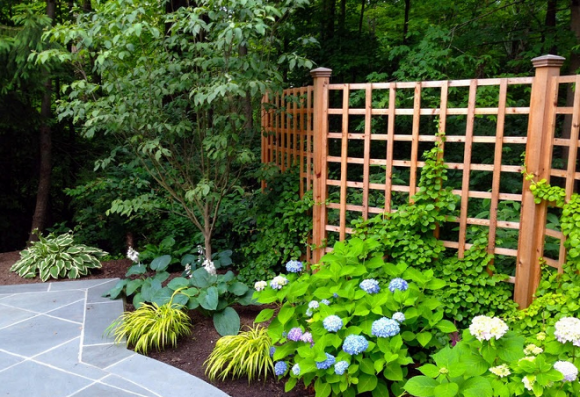 Красивый забор для дачного участка