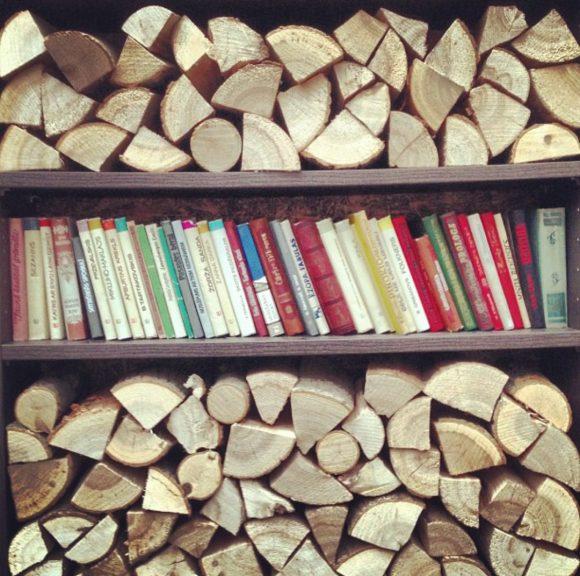 Дрова и книги на полке