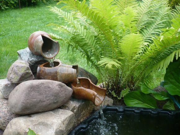 Папоротник на берегу прудика с водопадом