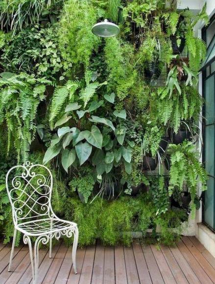 Вертикальная композиция из контейнерных растений